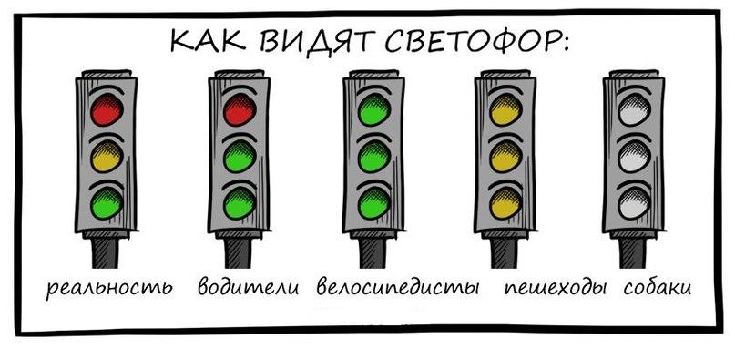Прикольные картинки про светофор