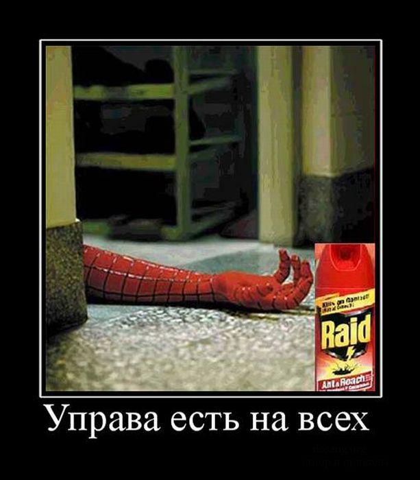 сообщили смешные демотиваторы человек паук здесь